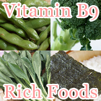 Vitamin b9 rich foods
